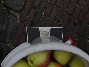 appels in emmer 15kg